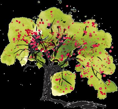 Fruits de saison